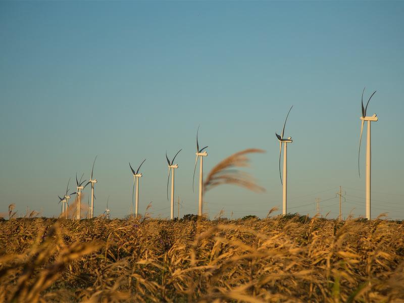 Henrique Carsalade Martins   Brookfield Brasil   Transição para economia de carbono neutro é uma atrativa oportunidade de investimentos