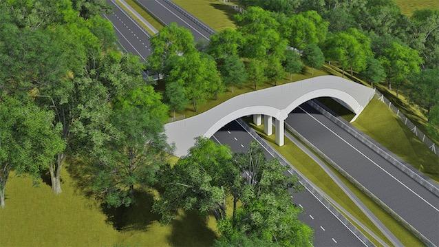 Henrique Carsalade Martins | Brookfield Brasil | Arteris Fluminense inicia a construção do primeiro viaduto vegetado em rodovias federais do Brasil